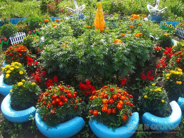 Из каких цветов сделать клумбу