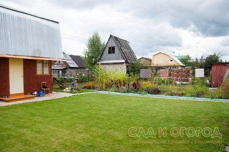 Семь шагов к созданию газона
