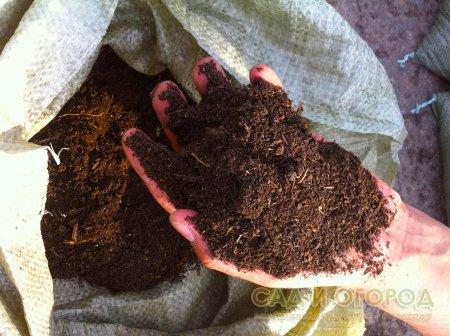 Удобряем перегноем сад и огород
